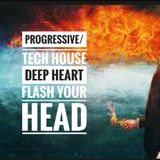 Progressive/Tech House Deep Heart flash your Head