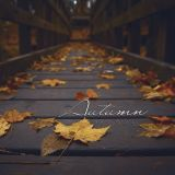 Jason Bently -  Autumn