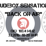 Rudeboy Sensation Radioshow - February 2016