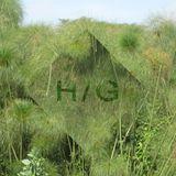 H/G Test