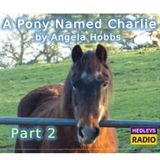 A Pony Named Charlie - Part 2