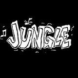 JUNGLE CLASSIC'S (VOL. 15) (DJ DU SET)