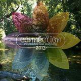 LIVE @ CONNECTION FESTIVAL 2013