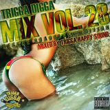 TRIGGA DIGGA MIX VOL. 28 - REGGAE ROADBLOCK EDITION