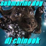 submarine dog