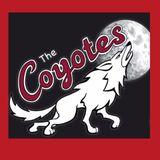 Hem breakfast show   coyotes interview 05/10