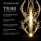 SAO Tokyoska @TRIBE 18Jan2013 - Dark Minimalistic Underground Noise