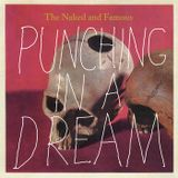 The Naked and the Famous - Punching in a Dream Remix -DJ Booch ft Jennifer Geary