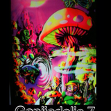 ॐ  Ganjiadelic 7 - Summer Flash 2013 ॐ Day or Night Mix