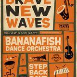 Patti Schmidt-Brave New Wave 2004-2005 on CBC Radio 2.-#9