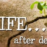 Life After Death - Audio