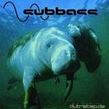 FLOW DIVE Subbass Mix 09 by Speciez