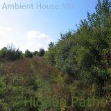 Hidden Paths (Ambient House Mix 1)