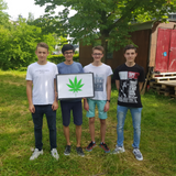 Kanti On Air: Legalisierung von Cannabis