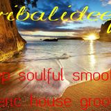 Gotta Be Deeeeep Vol 8 Mixed By Tribalideep