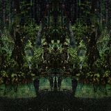Swamp Decay 148bpm
