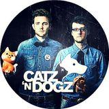 Catz 'N Dogz - Boiler Room Poland DJ Set [01.17]