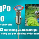 SongPo Radio Ep 63 - Biodynamic Farmer Linda Borghi moves to DC