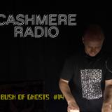 Bush of Ghosts # 14 with David Tinning