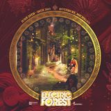 Shroudy Electric Forest Mix entry