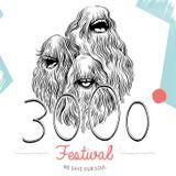 Carsten Rausch @ 3000 Grad Festival 2014