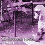 The Bubble Gum Session (Cuebase.FM Podcast June 2015)