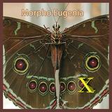 Morpho Eugenia X