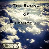 The Sound Of Trance 30