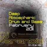 Neil paranoid Deep atmospheric mix Feb 2011 tracklisted