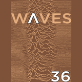 """WΛVES #36 - """"NOT SO COLD, A WARM WAVE COMPILATION"""" - 18/01/2015"""