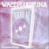[022] WallPlugTuna on NSB Radio