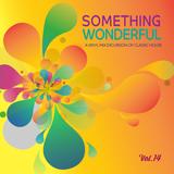 Something Wonderful |2 -28 | Vol. 14