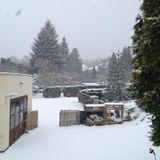 WinterSonntag