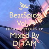 BeatSpice Vol.7 Mixed by DJ TAM