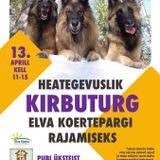 Sandra Hütsi rääkis heategevuslikust kampaaniast  Elva koertepargi rajamiseks