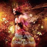 Fierce Angel Presents The Story so Far 勝手に in the mix その1