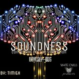 SOUNDNESS #006