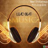   Levid Beat   Best Of Mashlegs #011 June 2014