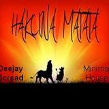 Deejay Scread - Matt -  ha haa  VS Hakuna Matata  ( Minimal House)