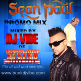 Sean Paul Promo mix |mixed by DJ Vibe | www.bookdjvibe.com