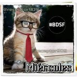 BDSF (16-01-13) Miércoles de Noticias y sección de tecnología