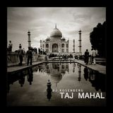 Dj Rosenberg- Taj Mahal