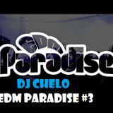 DJ CHELO - EDM Paradise #3