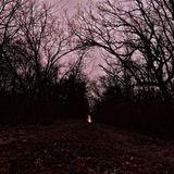 Fallacious Woods - A Mixtape