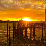 Kay Nakayama - Ambient 4 Your Love - VNC - 2