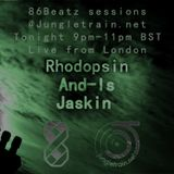 And-Is, Rhodopsin and Jaskin @ Jungletrain.net 2014.12.09
