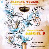 Gabriel B live @ Szevasz Tavasz @ Gold Club, Szentes 2013.03.02.