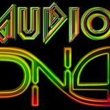 AUDIO DnA- Liquid Robots