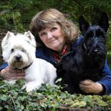 Canine Capers - The Radio Show from Jacqui at Westie Rehoming UK