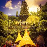 Kay Nakayama - Peace Forest Fuji - pt.2